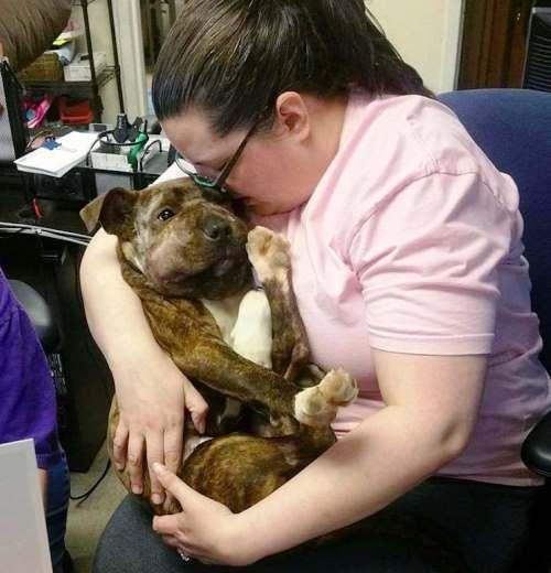 cachorro-rescatado-baltimore2 - copia