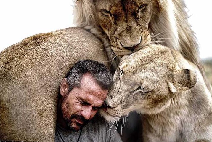 leones-abrazan-a-su-heroe2