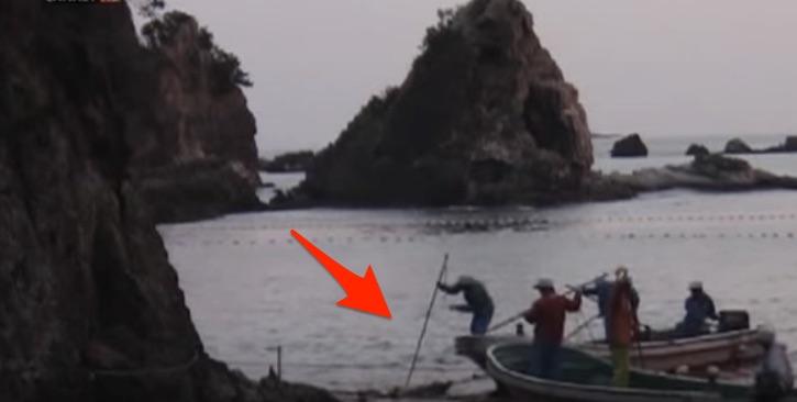 matanza-delfines-taiji5.1