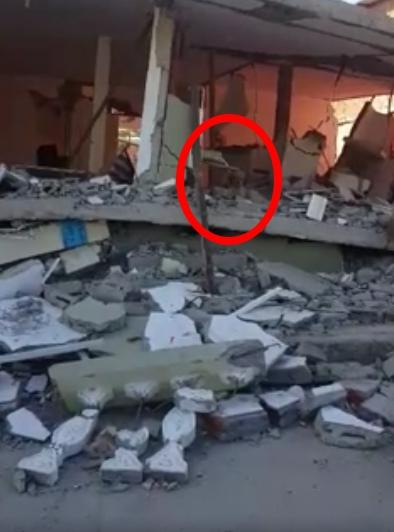 perro-adoptado-despues-de-terremoto-ecuador6