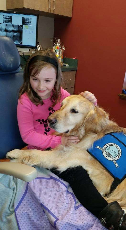 perro-calma-a-pacientes-dentista2