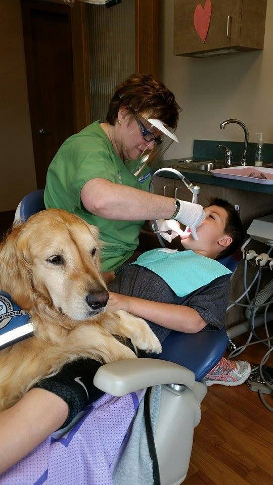 perro-calma-a-pacientes-dentista6
