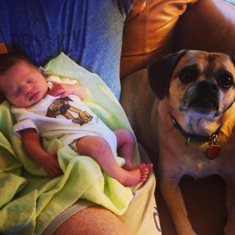 perros y bebes siesta 12