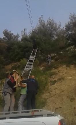 rescate-de-cabra-colgada-en-cable5