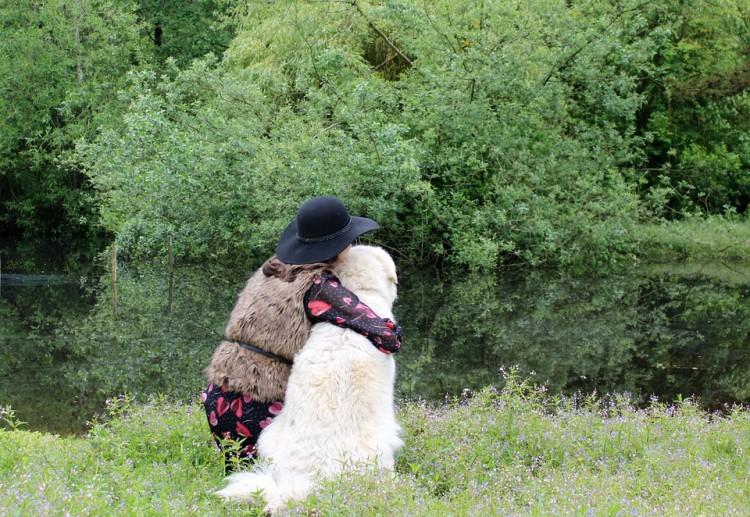 salir con amantes de perros 9
