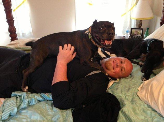 segunda cama para perros apretado