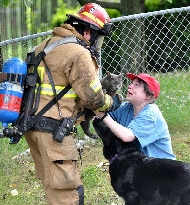 bomberos-rescatan-animales12