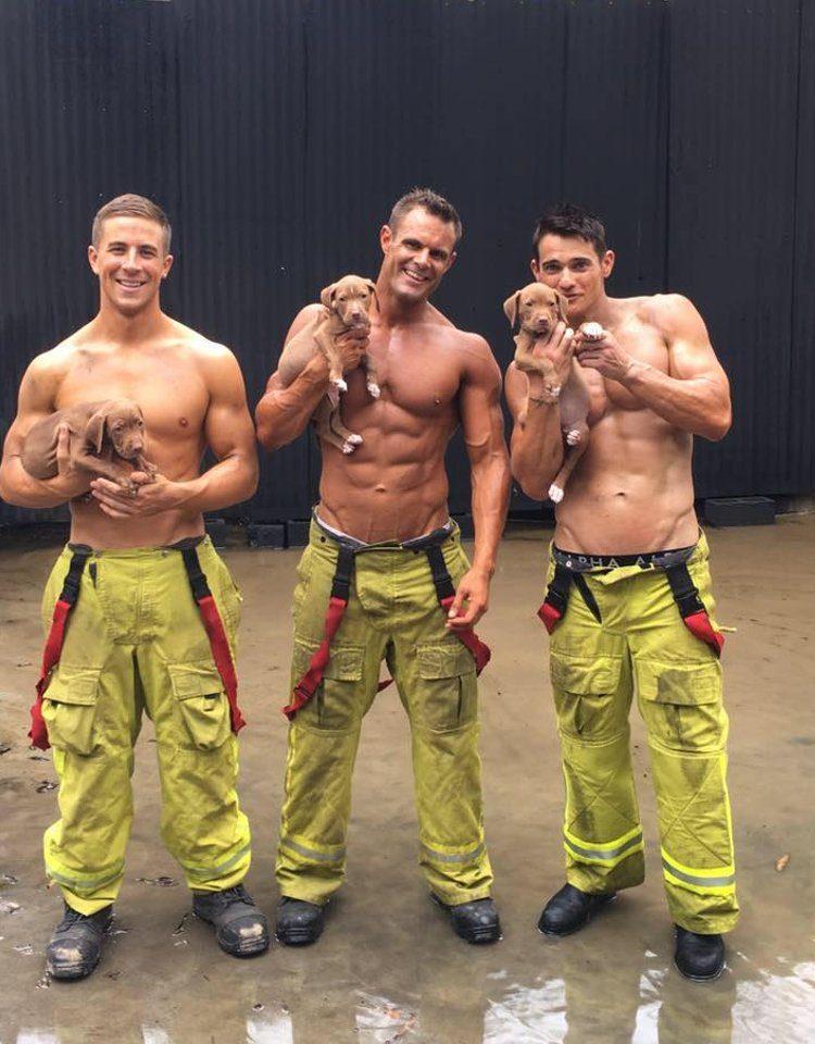 bomberos sexys posan con cachorros 3