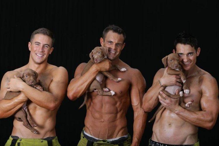 bomberos sexys posan con cachorros
