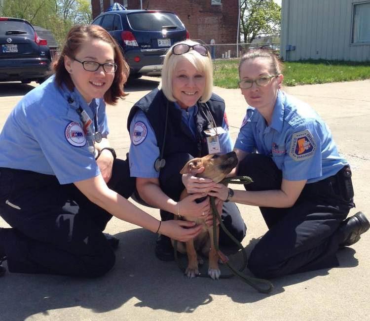 cachorro-corre-tras-ambulancia1