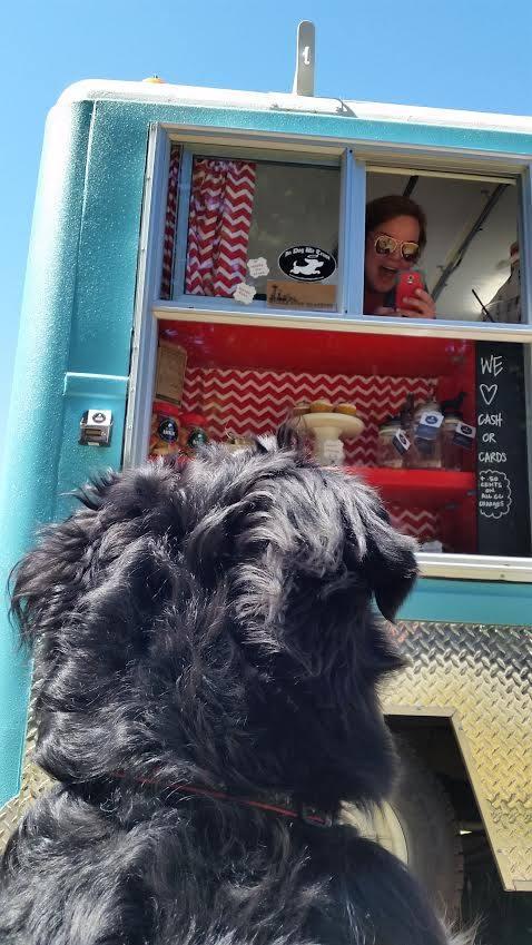 camión de comida para perros washington 15