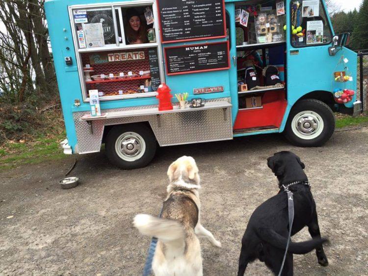 camión de comida para perros washington 2