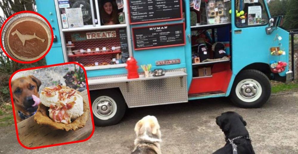 camion-para-perros-comida
