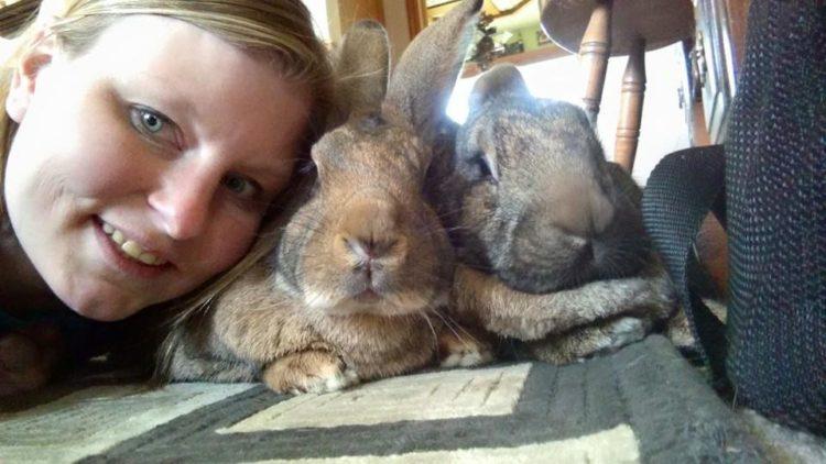 conejos-gigantes-rescatadas13