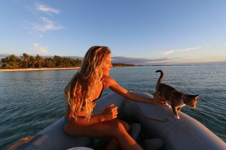gato amelia navega por el mundo 15