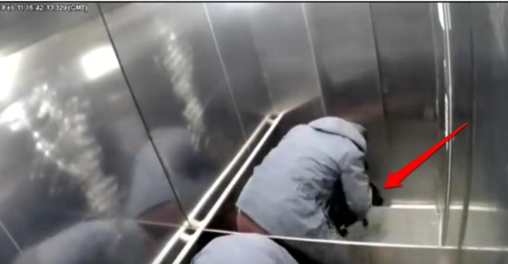 hombre-ascensor-pega-a-su-perro2