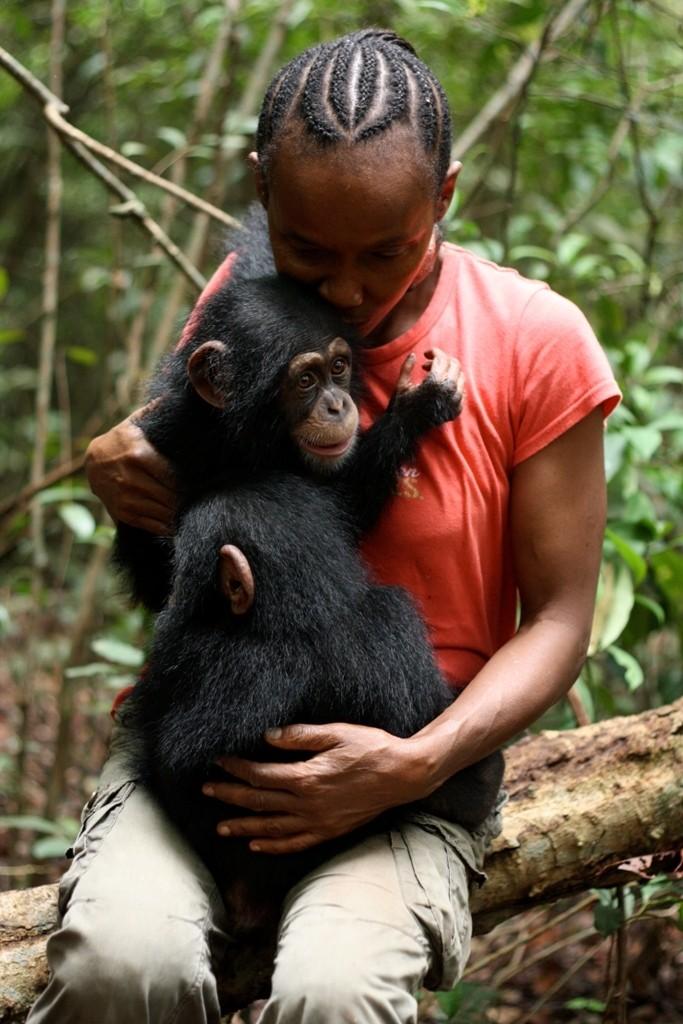 madre-adoptiva-chimpances4