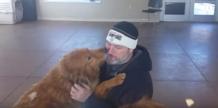 perro-perdido-reencuentro2