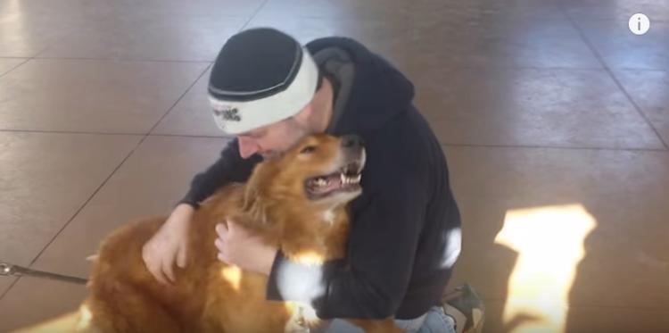perro-perdido-reencuentro4