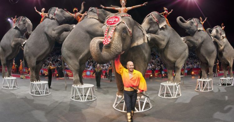 ringling-brothers2