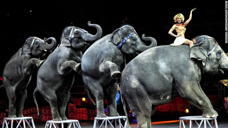 ringling-brothers4