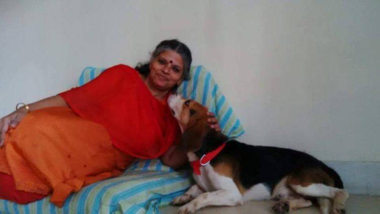 42-Beagles-rescatados 14