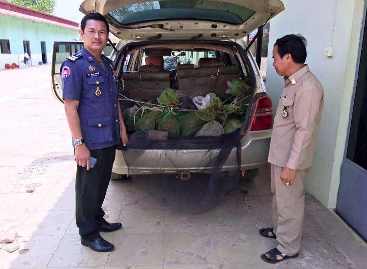 43 monos salvados camboya coche 5