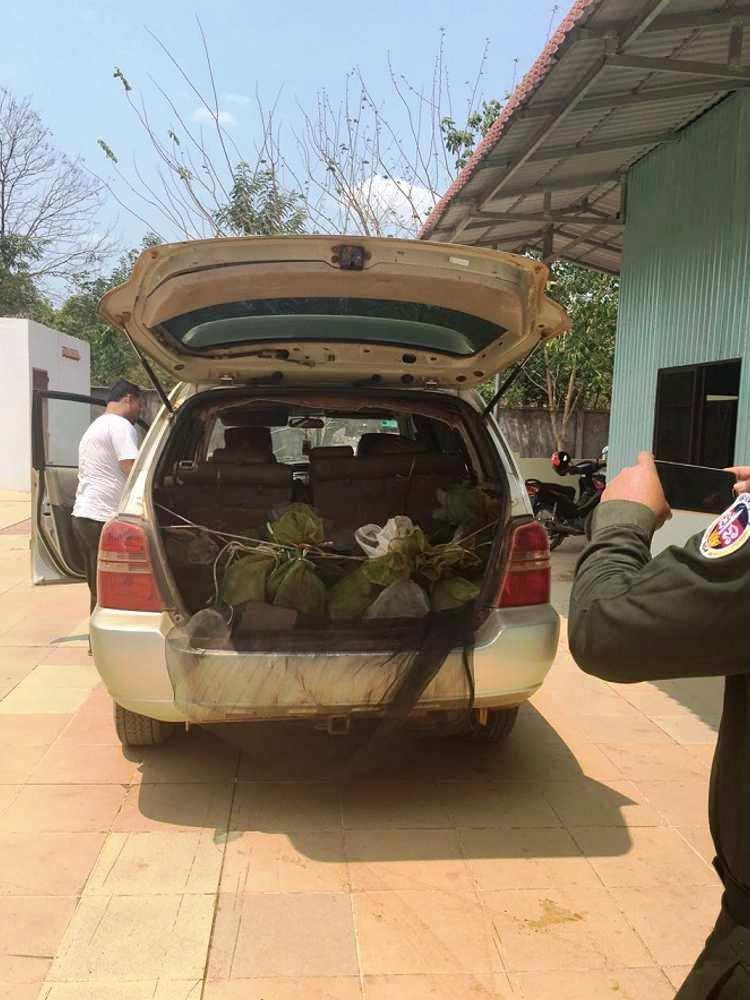 43 monos salvados camboya coche 6