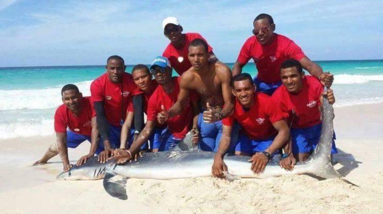 Guardavida-selfie-tiburon 2
