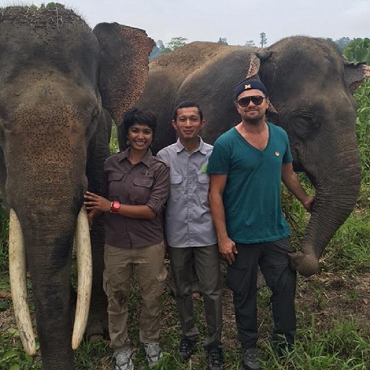 Leonardo DiCaprio Santuario Indonesia 4