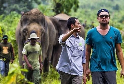 Leonardo DiCaprio Santuario Indonesia 9