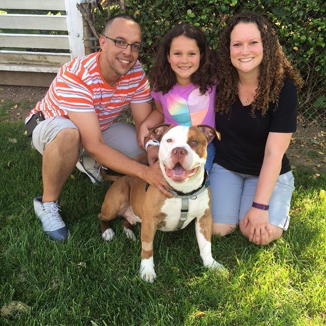Pitbull-adoptado-familia-sordos 2