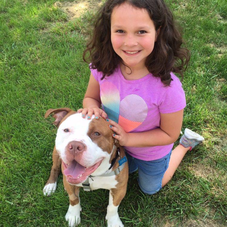 Pitbull-adoptado-familia-sordos 6