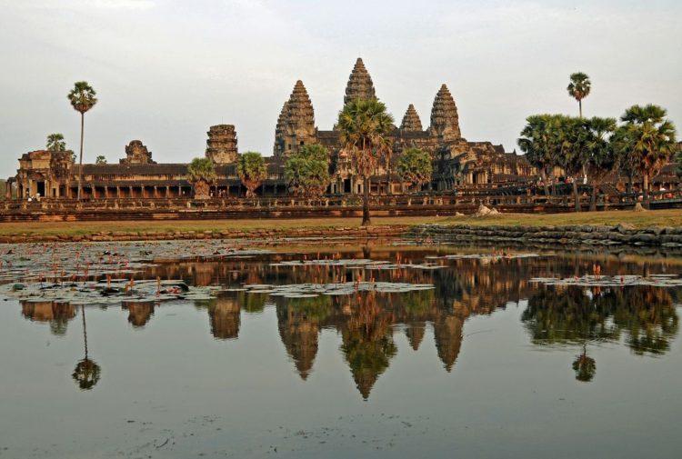 elefante muere golpe de calor trabajando templo