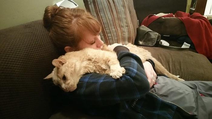 gato-adoptado-enfermo4
