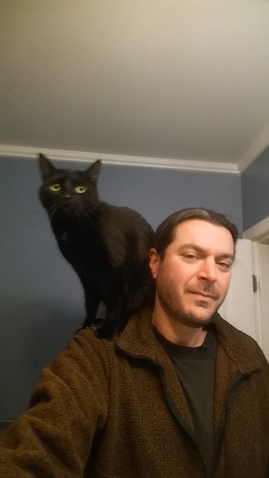 gato rescatado camionero 9