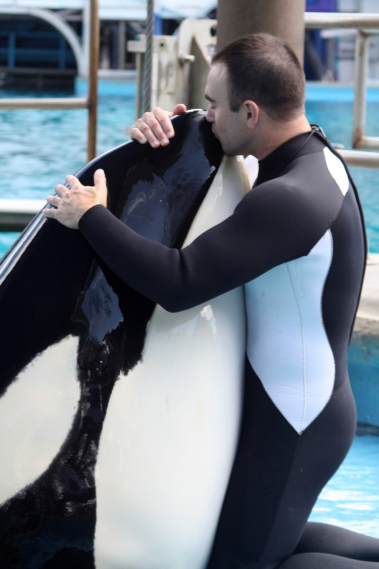 john-hargrove-orcas4