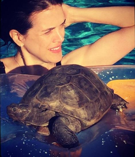 14 mejores amigos tortuga de 50 años y perrita adoptados por actriz van a todos lados