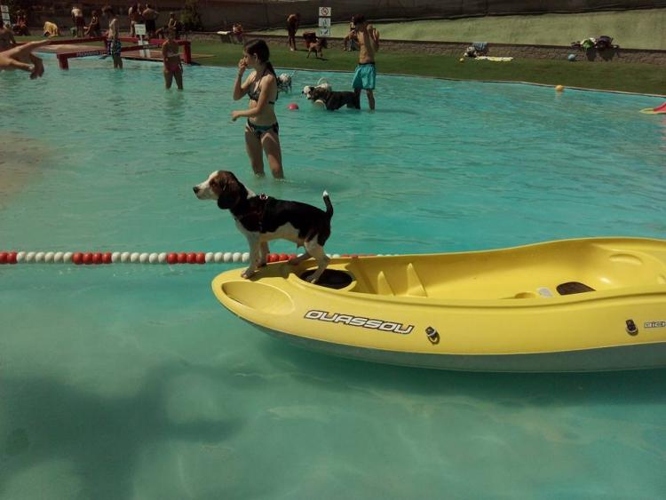 Aquapark-canino 3