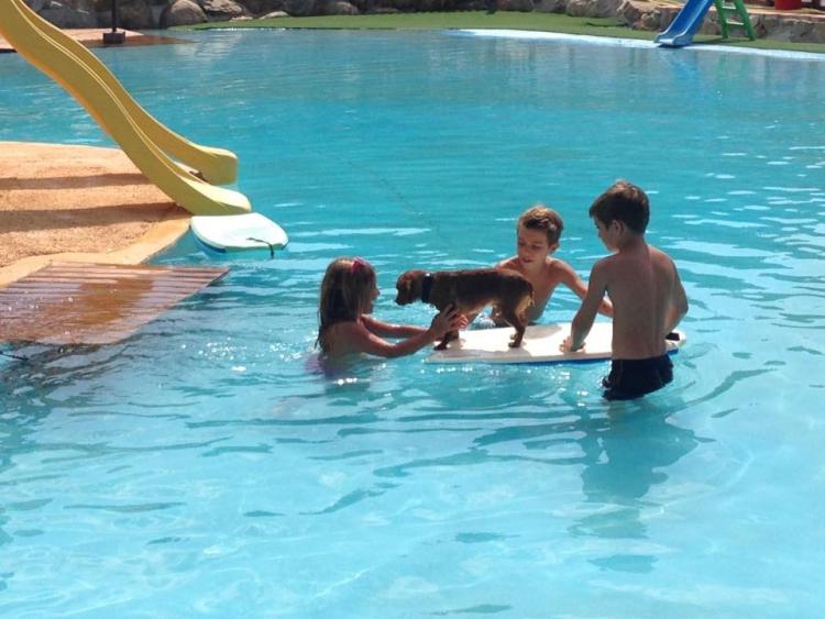 Aquapark-canino 5