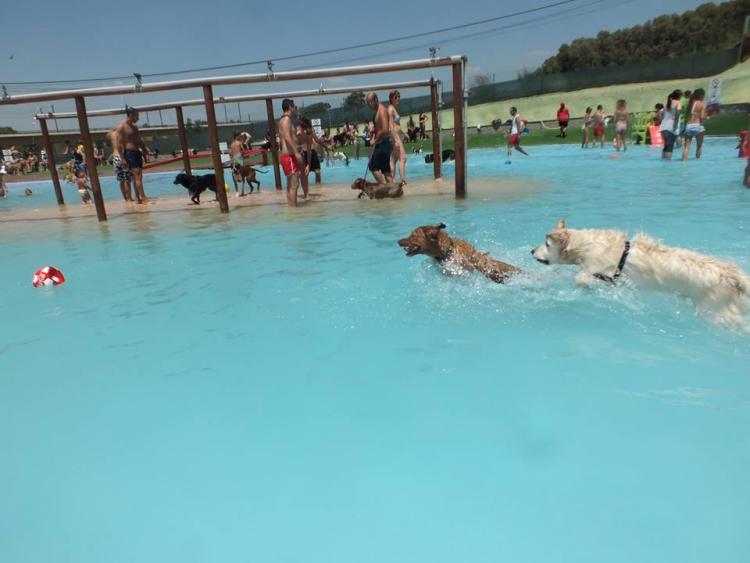 Aquapark-canino 7