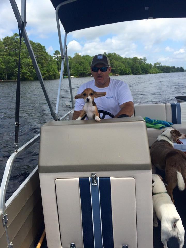 Howie-Beagle 8