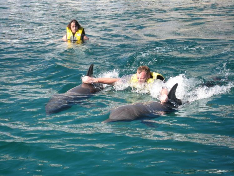 Nadar-con-delfines 4