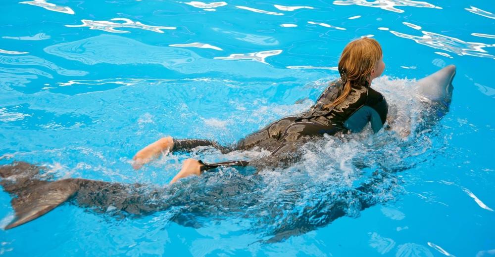 Nadar-con-delfines-portada