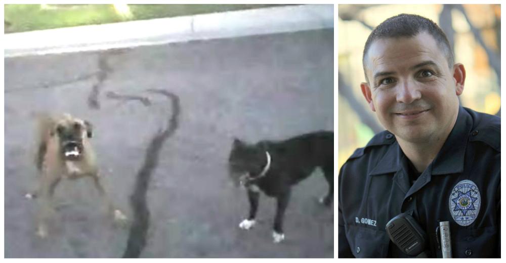 Perros-rabiosos-policia-portada