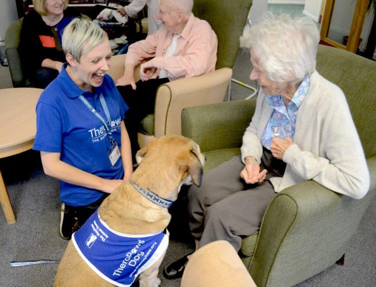 Perros-terapeuticos-ancianos 1
