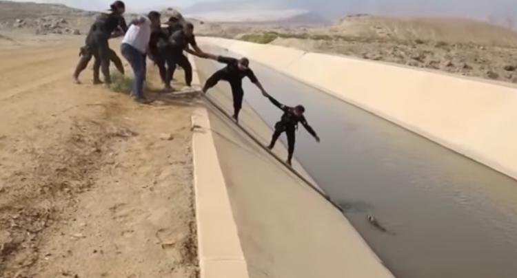 Rescate-perro-canal-Peru 1