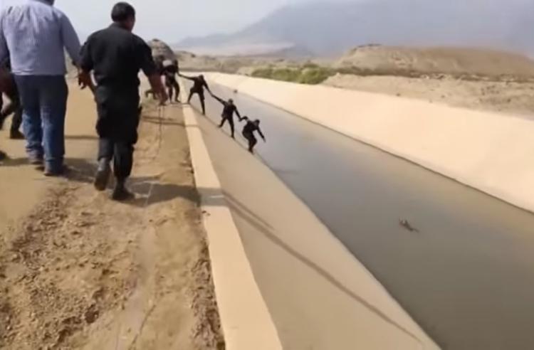 Rescate-perro-canal-Peru 3