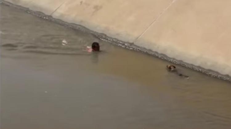Rescate-perro-canal-Peru 5