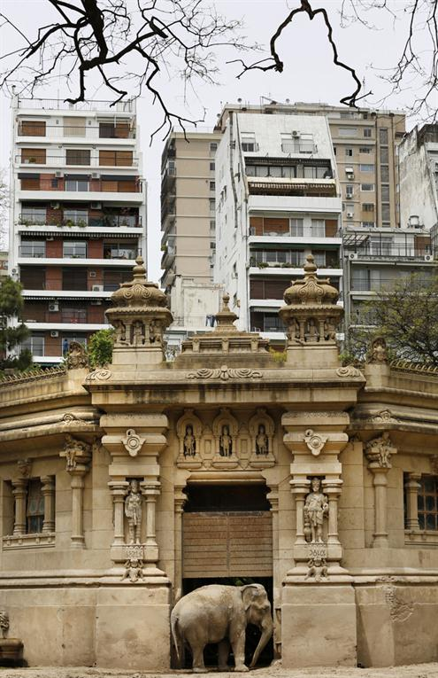 Zoologico-Bueno-Aires 16